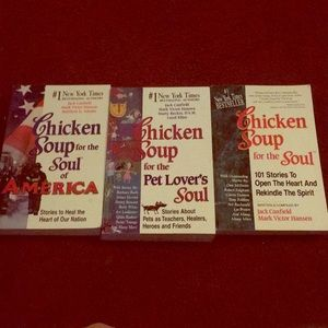 Other - Chicken soup for the soup Book Lot